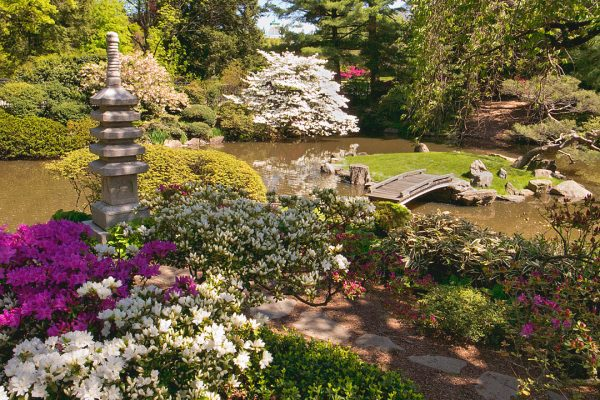 Japanese Garden and Bridge,Fairmount Park, Philadelphia
