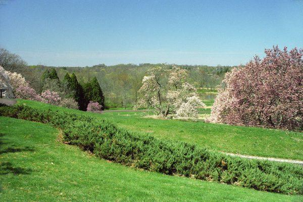 Morris Arboretum, Spring
