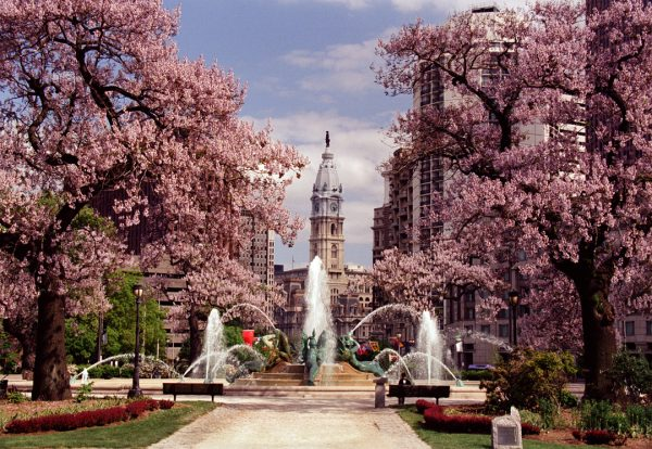 Swann Fountain, Spring, Philadelphia, photograph