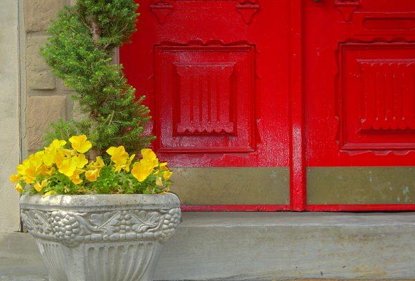 Red Door and Yellow Flowers, Philadelphia