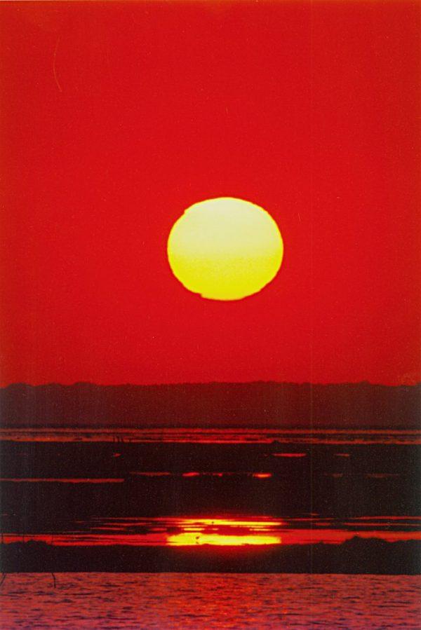 Hot Sun, Brigantine New Jersey, photograph