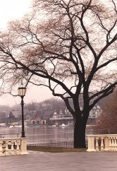 Lamp Light And Boat House Row, Schuylkill River, Philadelphia, photograph