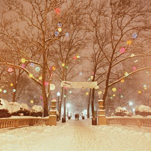 Luminaire In The Square, Rittenhouse Square, Philadelphia, photograph
