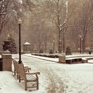 Tracks In Snow, Rittenhouse Square, Philadelphia, photograph