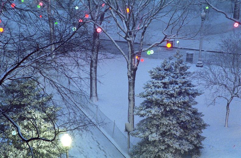 Lavender Evening, Rittenhouse Square, Philadelphia, photograph