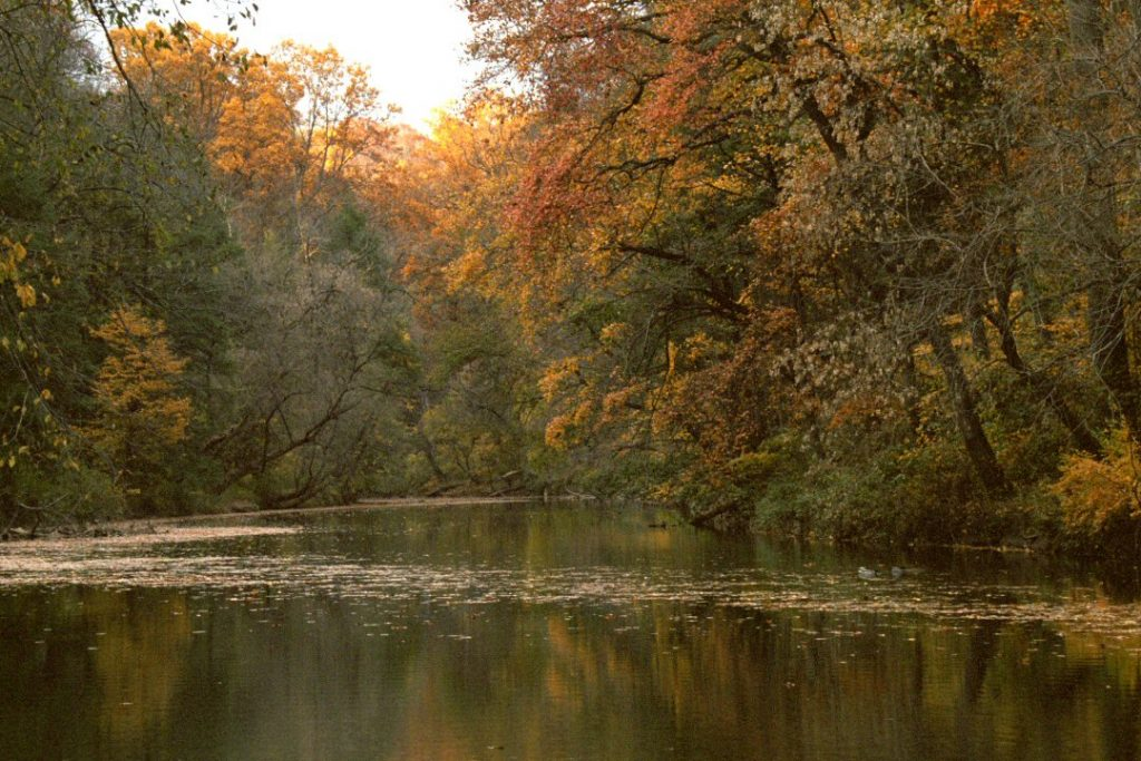 Wissahicken Creek, Autumn, photograph, Philadelphia